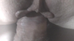 Cock Rubbing Pussy Clit and Asshole close up